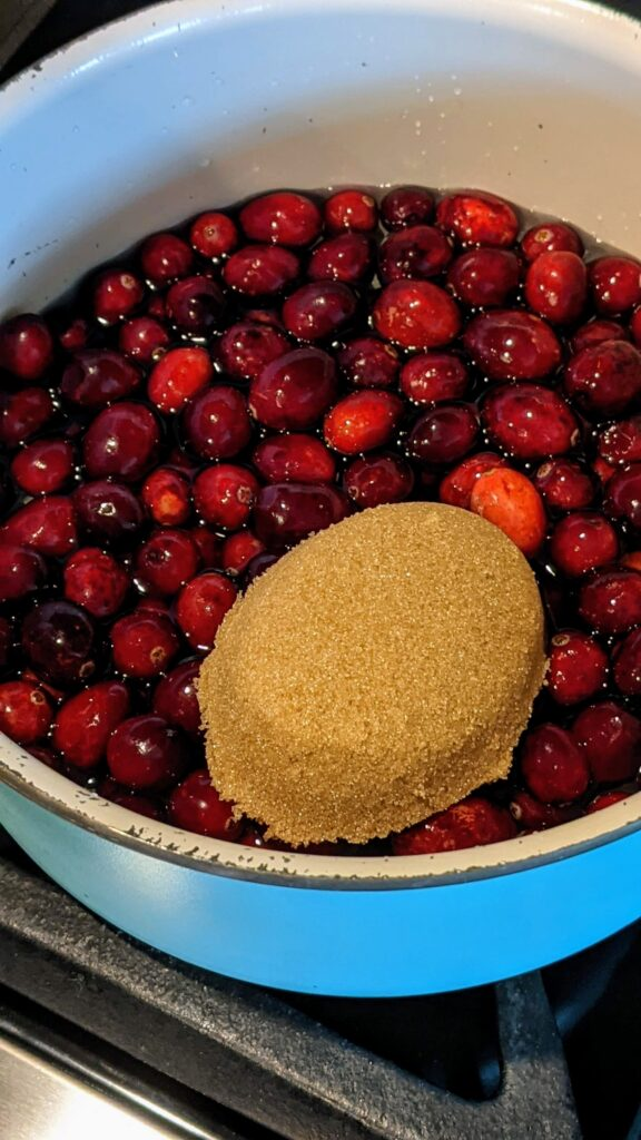 Boiling cranberries in saucepan adding brown sugar, vanilla and cinnamon.
